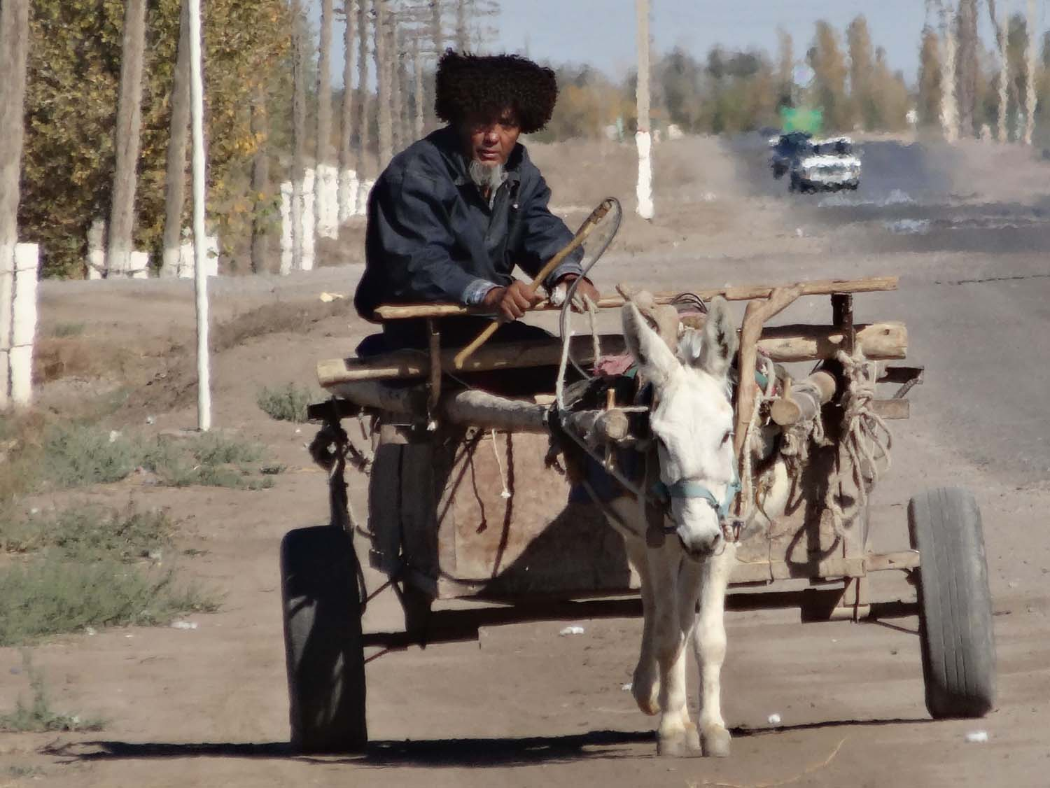 still plenty of donkeys and carts in Turkmenistan