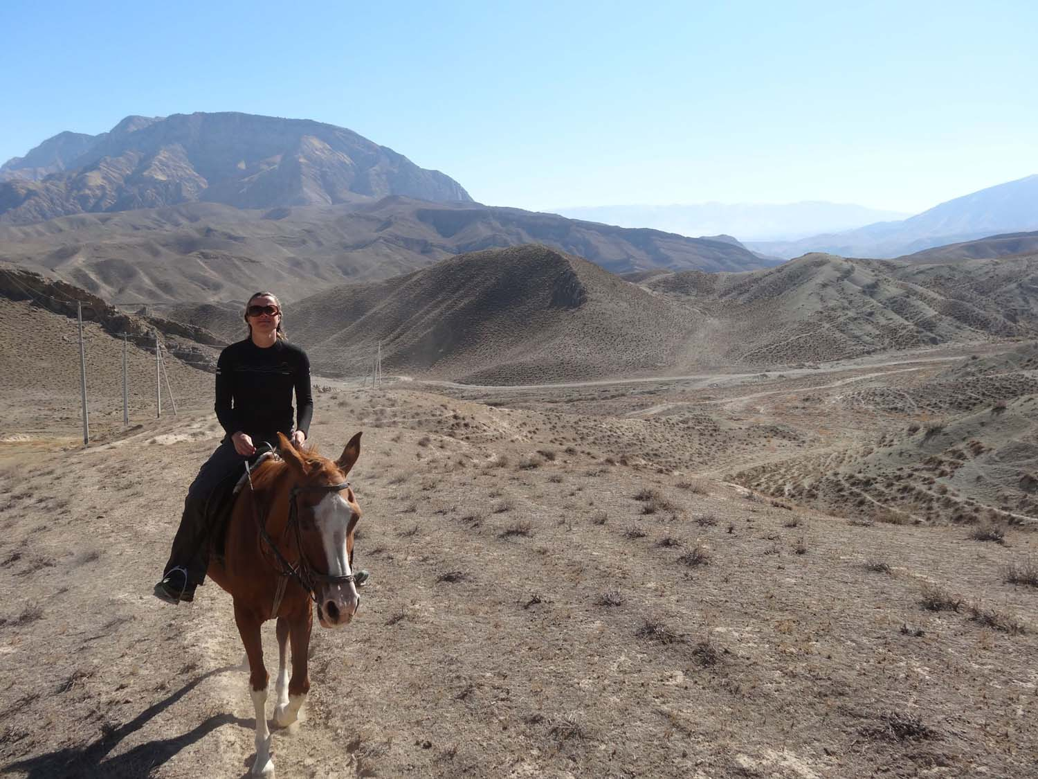 riding the magnificent Akhal-Teke horses in the foothills of the Kopet Dag mountains