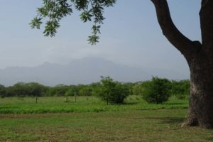 views of the Uluguru Mountains from the Mbuyuni Farm Retreat cottages, it's a bit hazy today