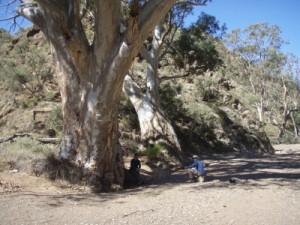 another walk in a dry river bed